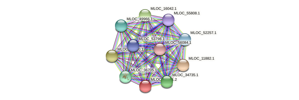MLOC_20591.2 protein (Hordeum vulgare) - STRING interaction network