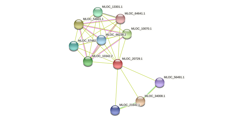 MLOC_20729.1 protein (Hordeum vulgare) - STRING interaction network