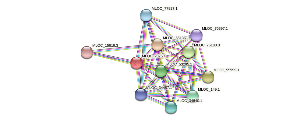 MLOC_2075.1 protein (Hordeum vulgare) - STRING interaction network