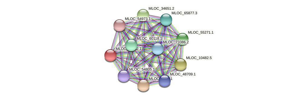 MLOC_20762.1 protein (Hordeum vulgare) - STRING interaction network