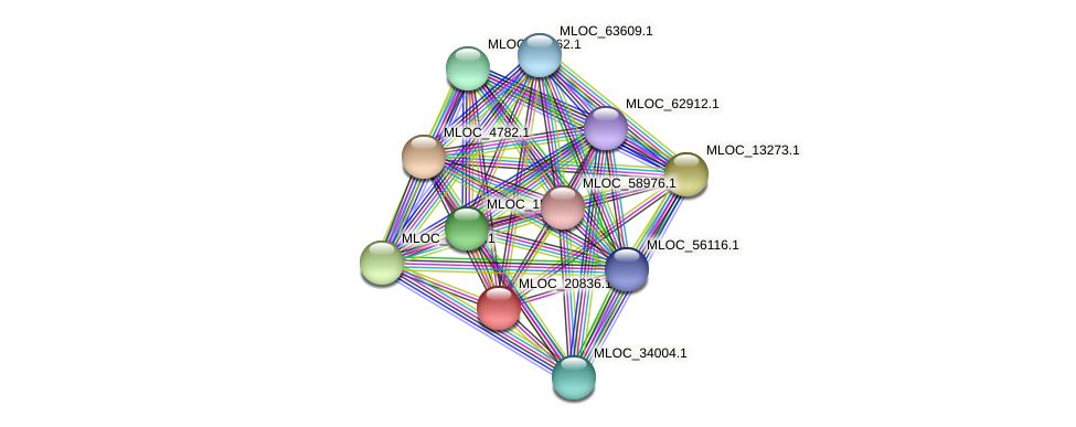 MLOC_20836.1 protein (Hordeum vulgare) - STRING interaction network