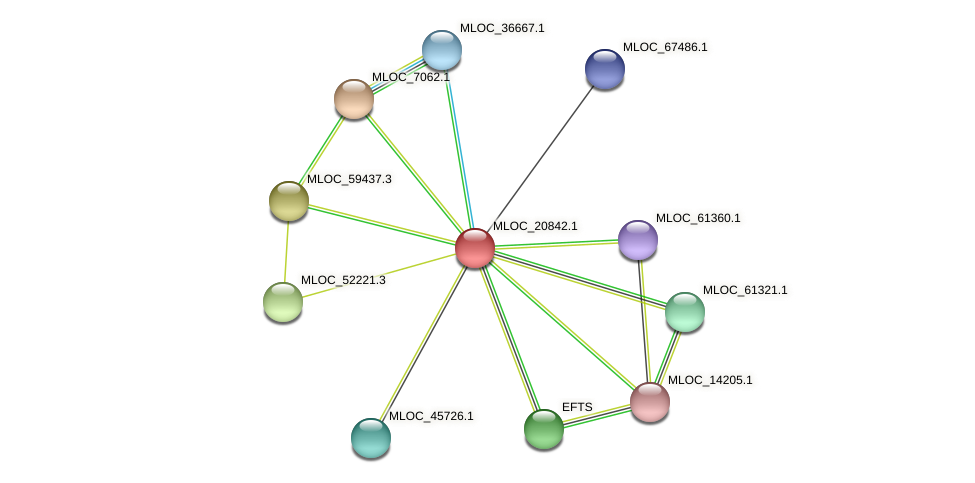 MLOC_20842.1 protein (Hordeum vulgare) - STRING interaction network