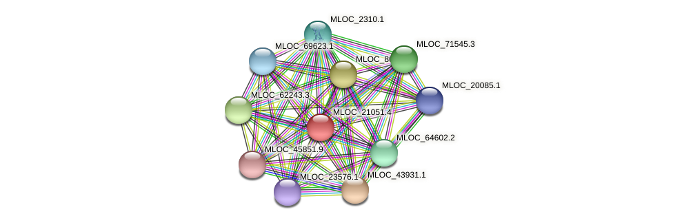 MLOC_21051.4 protein (Hordeum vulgare) - STRING interaction network