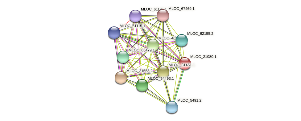MLOC_21080.1 protein (Hordeum vulgare) - STRING interaction network