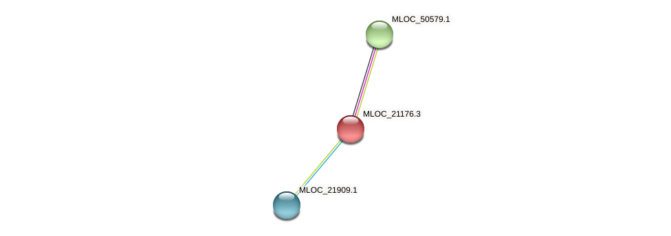 MLOC_21176.3 protein (Hordeum vulgare) - STRING interaction network