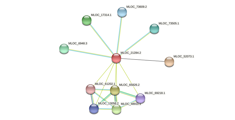MLOC_21284.2 protein (Hordeum vulgare) - STRING interaction network