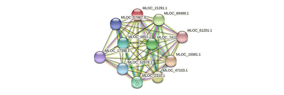 MLOC_21291.1 protein (Hordeum vulgare) - STRING interaction network