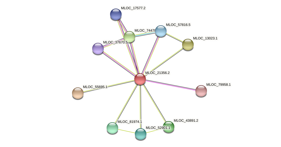 MLOC_21356.2 protein (Hordeum vulgare) - STRING interaction network