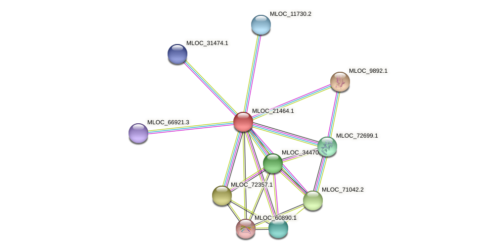 MLOC_21464.1 protein (Hordeum vulgare) - STRING interaction network