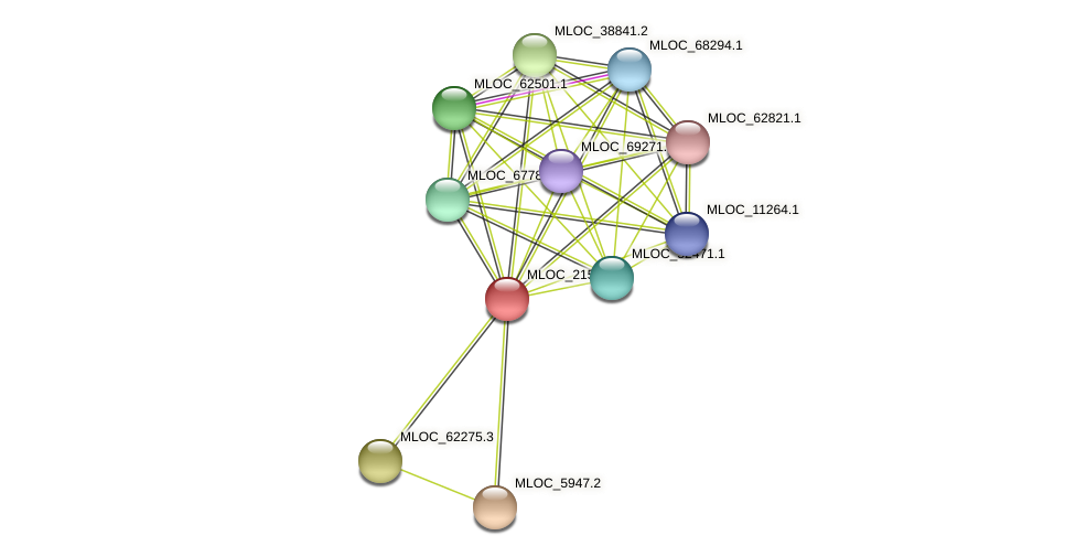MLOC_21503.1 protein (Hordeum vulgare) - STRING interaction network