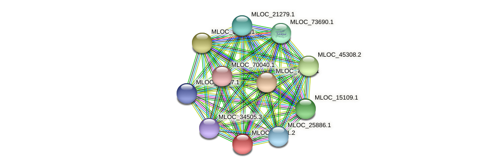 MLOC_21561.2 protein (Hordeum vulgare) - STRING interaction network
