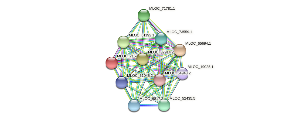 MLOC_21596.1 protein (Hordeum vulgare) - STRING interaction network