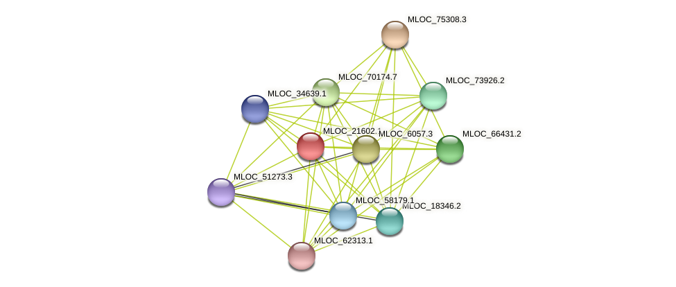 MLOC_21602.1 protein (Hordeum vulgare) - STRING interaction network