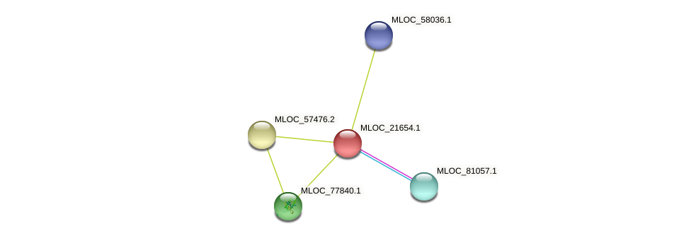 MLOC_21654.1 protein (Hordeum vulgare) - STRING interaction network