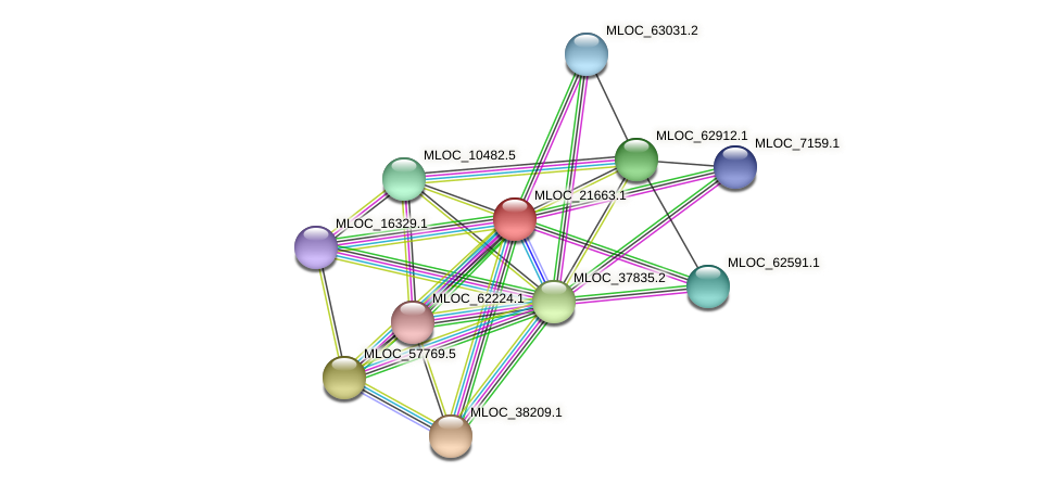 MLOC_21663.1 protein (Hordeum vulgare) - STRING interaction network