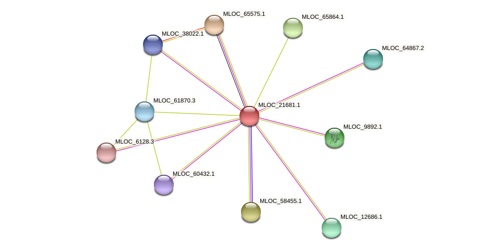 MLOC_21681.1 protein (Hordeum vulgare) - STRING interaction network