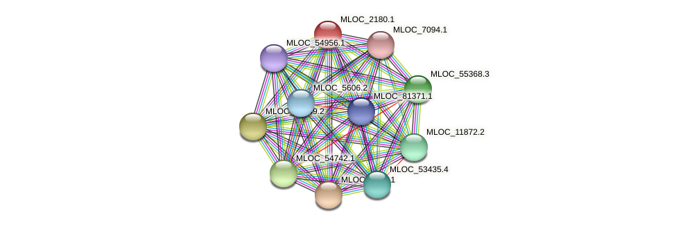 MLOC_2180.1 protein (Hordeum vulgare) - STRING interaction network