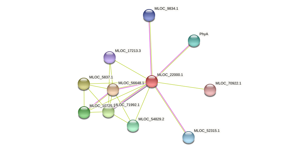 MLOC_22000.1 protein (Hordeum vulgare) - STRING interaction network