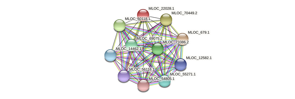 MLOC_22028.1 protein (Hordeum vulgare) - STRING interaction network