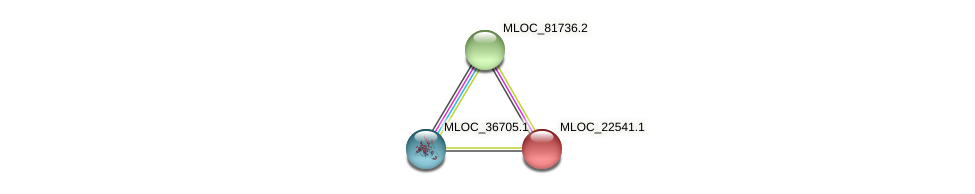 MLOC_22541.1 protein (Hordeum vulgare) - STRING interaction network