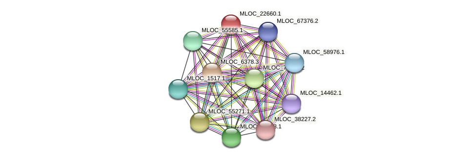 MLOC_22660.1 protein (Hordeum vulgare) - STRING interaction network
