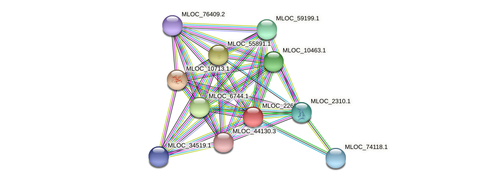 MLOC_22682.2 protein (Hordeum vulgare) - STRING interaction network