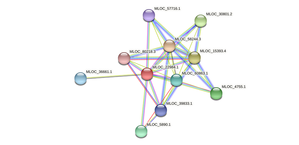 MLOC_22984.1 protein (Hordeum vulgare) - STRING interaction network