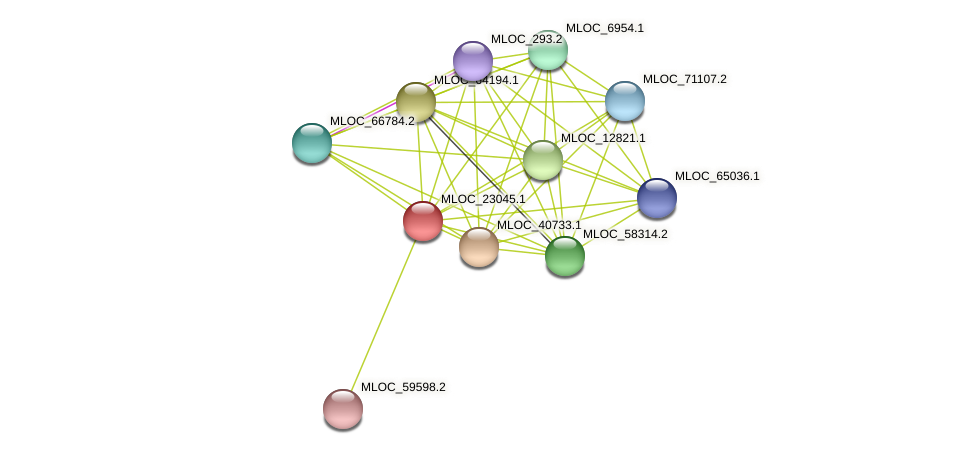 MLOC_23045.1 protein (Hordeum vulgare) - STRING interaction network