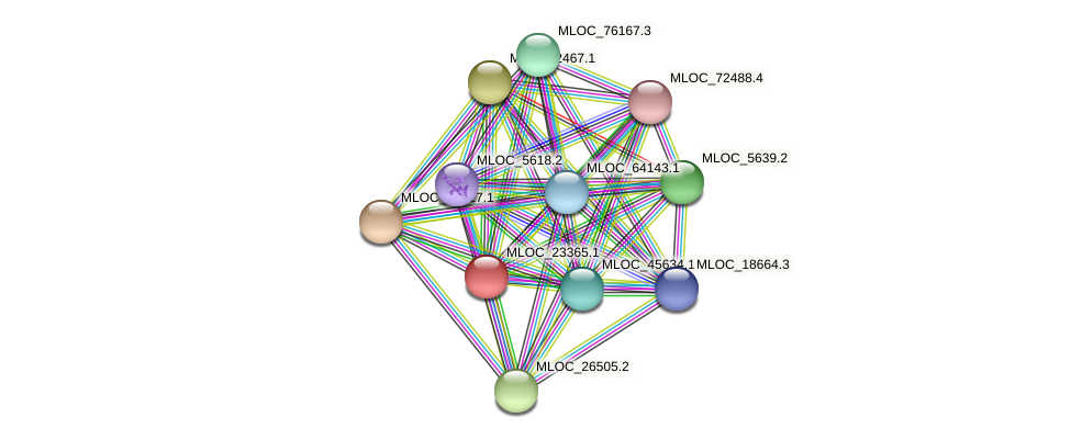 MLOC_23365.1 protein (Hordeum vulgare) - STRING interaction network