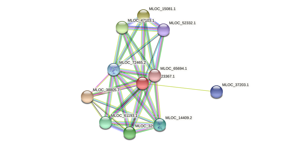 MLOC_23367.1 protein (Hordeum vulgare) - STRING interaction network