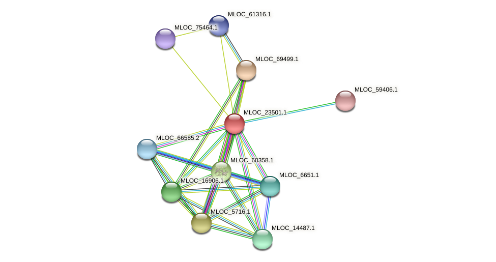 MLOC_23501.1 protein (Hordeum vulgare) - STRING interaction network