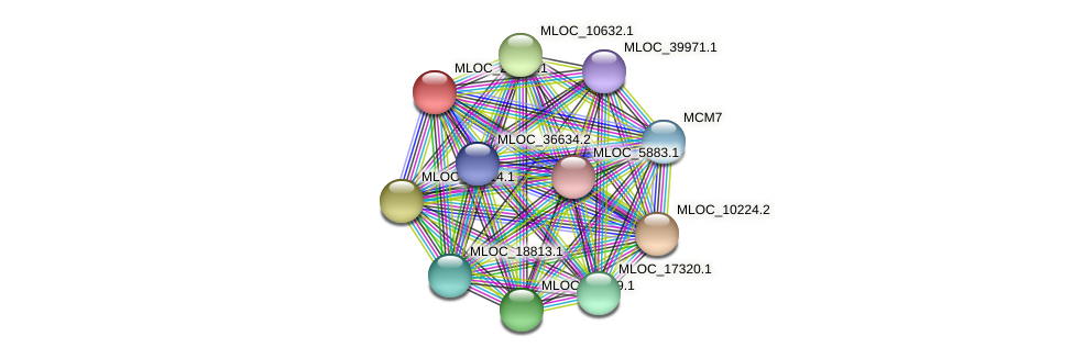 MLOC_23596.1 protein (Hordeum vulgare) - STRING interaction network