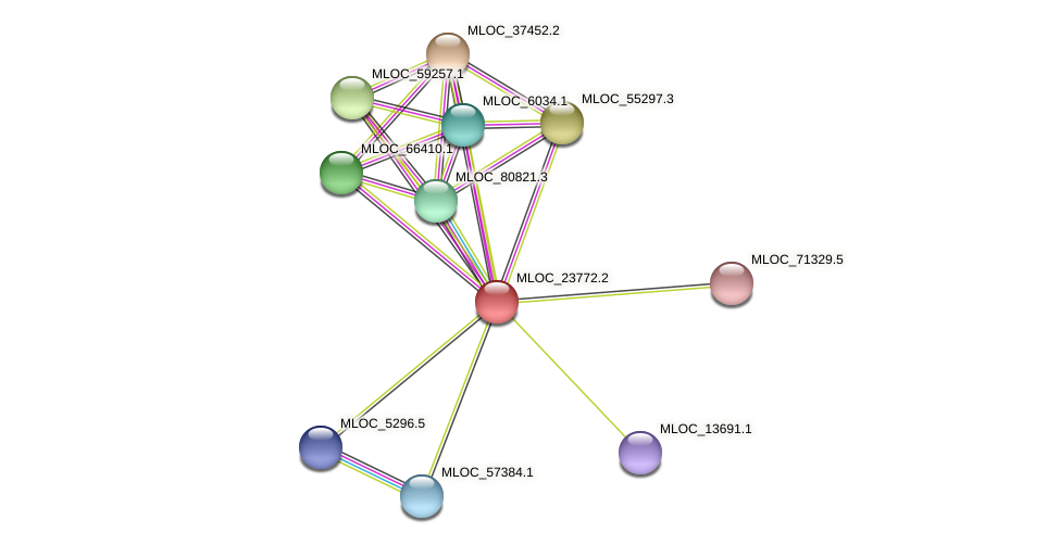 MLOC_23772.2 protein (Hordeum vulgare) - STRING interaction network