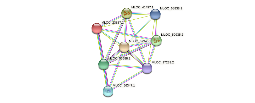 MLOC_23887.1 protein (Hordeum vulgare) - STRING interaction network