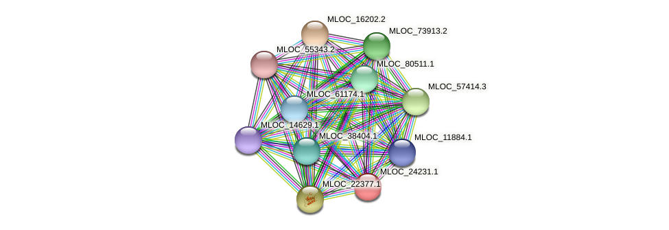 MLOC_24231.1 protein (Hordeum vulgare) - STRING interaction network