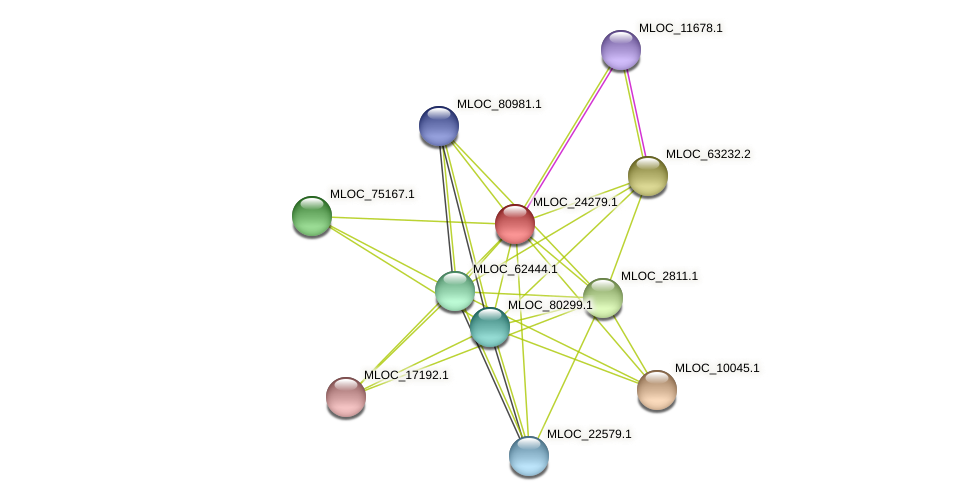 MLOC_24279.1 protein (Hordeum vulgare) - STRING interaction network