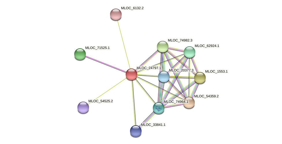 MLOC_24797.1 protein (Hordeum vulgare) - STRING interaction network
