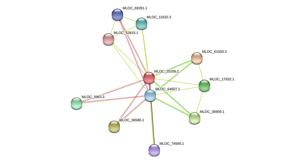 MLOC_25208.2 protein (Hordeum vulgare) - STRING interaction network