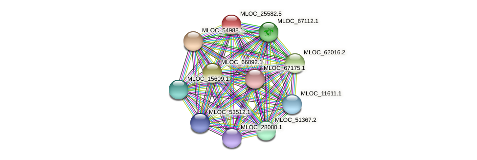 MLOC_25582.5 protein (Hordeum vulgare) - STRING interaction network