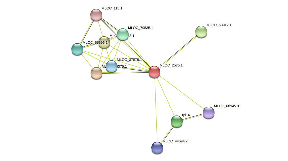 MLOC_2575.1 protein (Hordeum vulgare) - STRING interaction network
