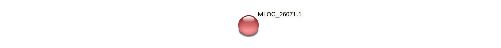 MLOC_26071.1 protein (Hordeum vulgare) - STRING interaction network