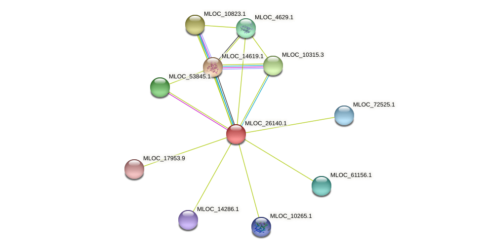MLOC_26140.1 protein (Hordeum vulgare) - STRING interaction network