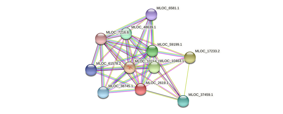 MLOC_2619.1 protein (Hordeum vulgare) - STRING interaction network