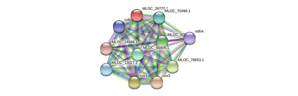 MLOC_26770.1 protein (Hordeum vulgare) - STRING interaction network