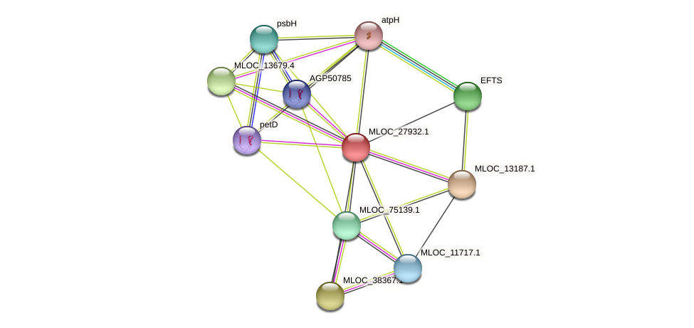 MLOC_27932.1 protein (Hordeum vulgare) - STRING interaction network