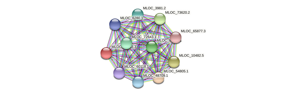 MLOC_28133.3 protein (Hordeum vulgare) - STRING interaction network
