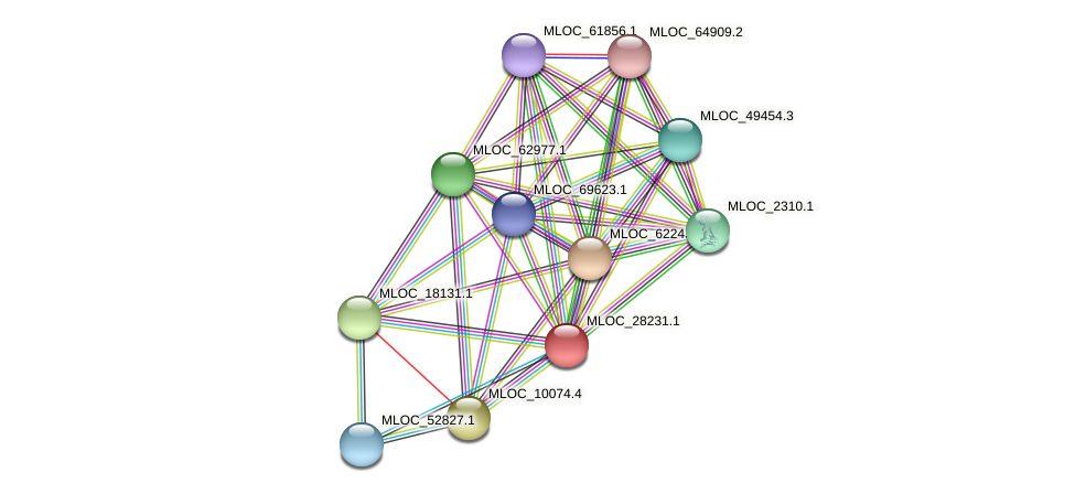 MLOC_28231.1 protein (Hordeum vulgare) - STRING interaction network