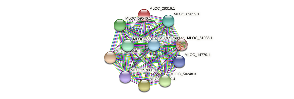 MLOC_28316.1 protein (Hordeum vulgare) - STRING interaction network