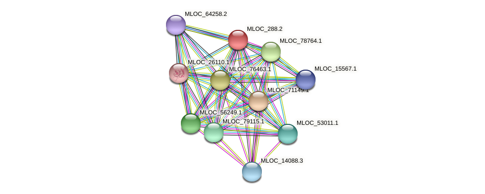 MLOC_288.2 protein (Hordeum vulgare) - STRING interaction network