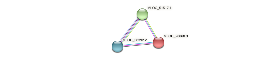 MLOC_28868.3 protein (Hordeum vulgare) - STRING interaction network
